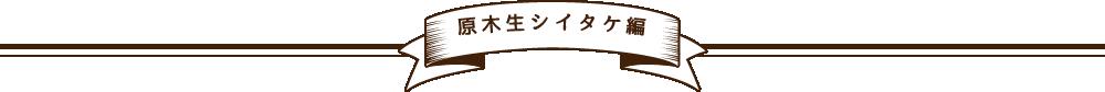 原木生シイタケ編