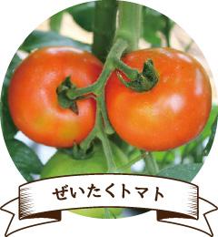 ぜいたくトマト